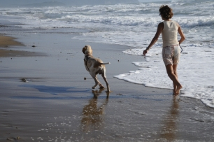 Con Cirano alla dog beach di San Vincenzo